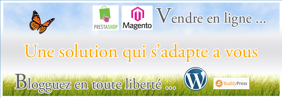 solution web entre niort et fontenay le comte : wordpress, prestashop ...